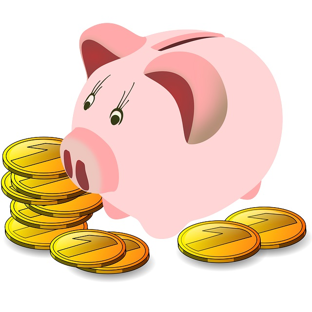 image of piggy bank and coins