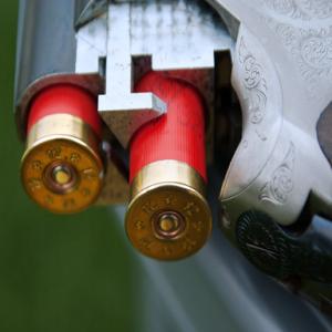image of bullets in gun